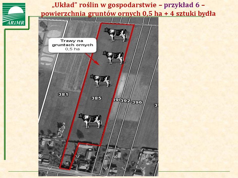 """Agencja Restrukturyzacji i Modernizacji Rolnictwa """"Układ"""" roślin w gospodarstwie – przykład 6 – powierzchnia gruntów ornych 0,5 ha + 4 sztuki bydła"""