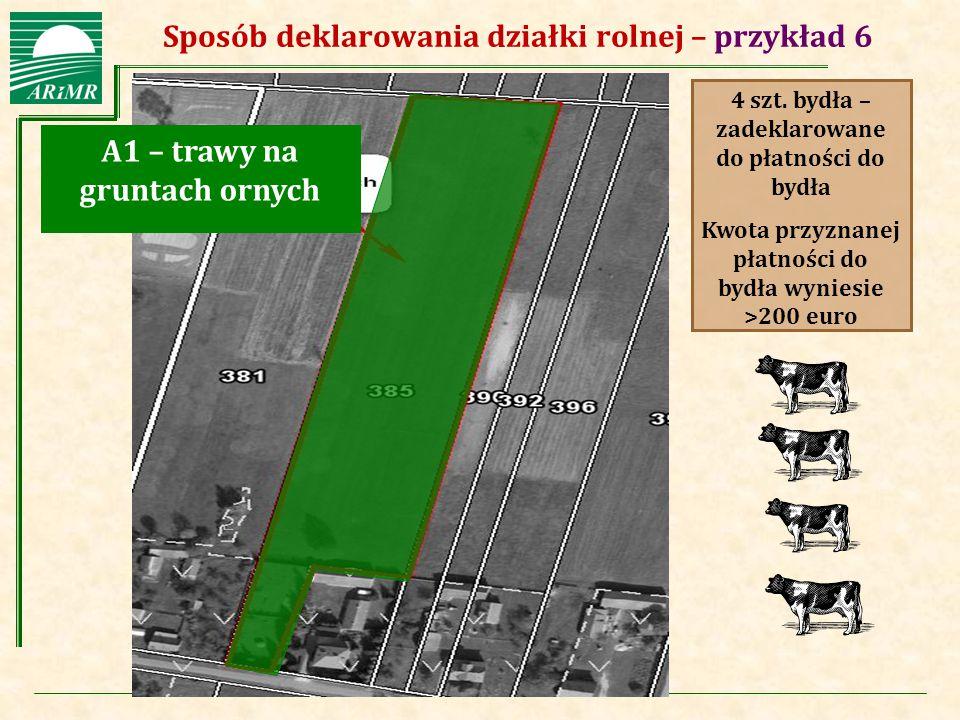 Agencja Restrukturyzacji i Modernizacji Rolnictwa A1 – trawy na gruntach ornych 4 szt. bydła – zadeklarowane do płatności do bydła Kwota przyznanej pł