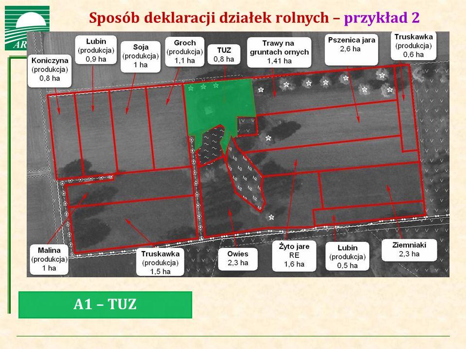 Agencja Restrukturyzacji i Modernizacji Rolnictwa Sposób deklaracji działek rolnych – przykład 2 A1 – TUZ