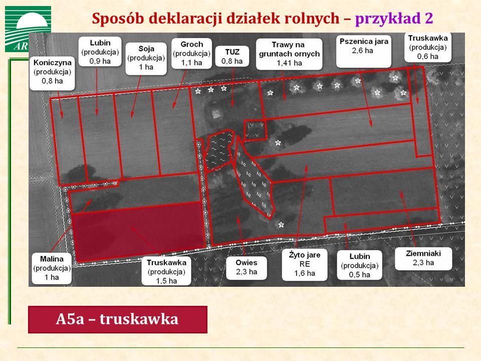Agencja Restrukturyzacji i Modernizacji Rolnictwa Sposób deklaracji działek rolnych – przykład 2 A5a – truskawka