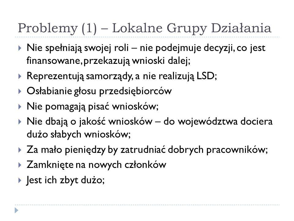Problemy (1) – Lokalne Grupy Działania  Nie spełniają swojej roli – nie podejmuje decyzji, co jest finansowane, przekazują wnioski dalej;  Reprezent