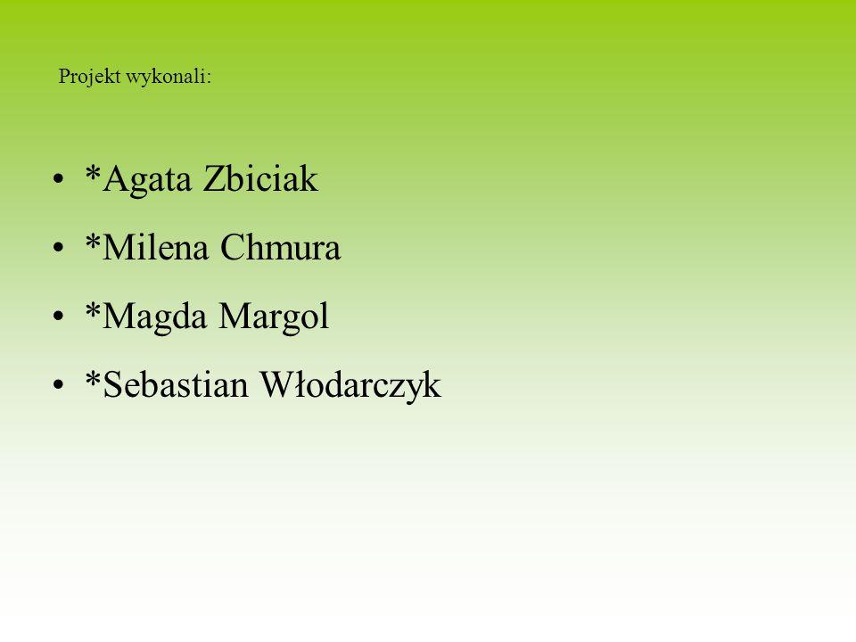 *Agata Zbiciak *Milena Chmura *Magda Margol *Sebastian Włodarczyk Projekt wykonali: