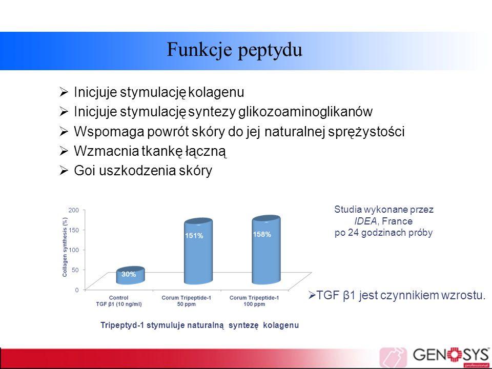 Funkcje peptydu  Inicjuje stymulację kolagenu  Inicjuje stymulację syntezy glikozoaminoglikanów  Wspomaga powrót skóry do jej naturalnej sprężystoś