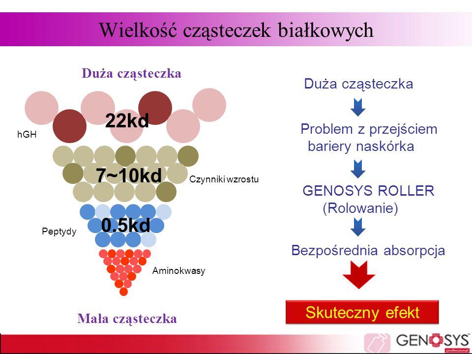 Duża cząsteczka Problem z przejściem bariery naskórka GENOSYS ROLLER (Rolowanie) Bezpośrednia absorpcja Skuteczny efekt Duża cząsteczka Wielkość cząst