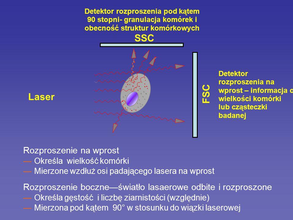 Laser duża ~ wysoki FSC Rozproszenie na wprost (FSC) Laser mała ~ mały FSC Wielkość