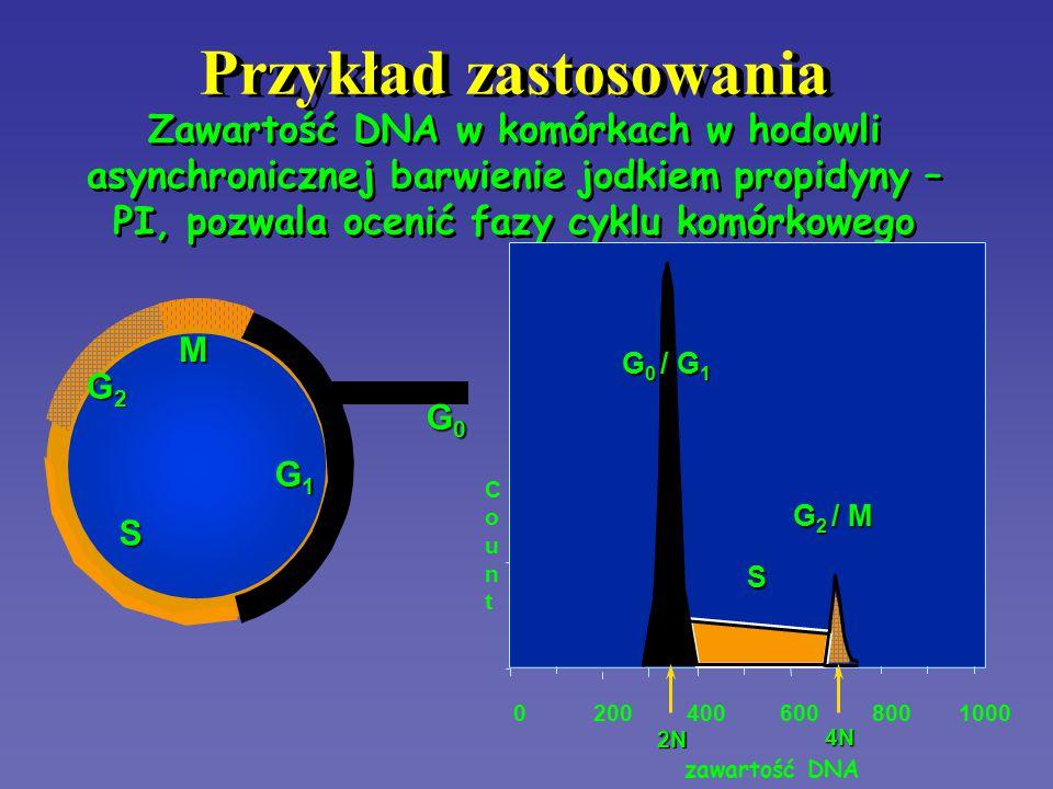 HISTOGRAM DNA G 0 -G 1 S S G 2 -M intensywność fluorescencji PI ilość komórek pik G 0 -G 1 odpowiada ilości DNA = 2n w fazie G 0 i G 1 obszar S to rozkład zawartości DNA w fazie S cyklu komórkowego pik G 2 -M odpowiada ilości DNA = 4n w fazie G 2 i M