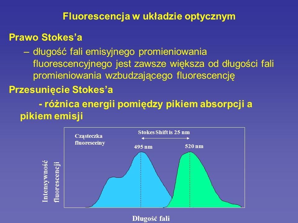 http://www.microscopyu.com Rodzaje stosowanych fluorochromów 1.autofluorescencja NADPH, chlorofil, melanina, kolagen, tyrozyna, tryptofan 2.białka wykazujące fluorescencję GFP i jego odmiany: EGFP, ECFP, EYFP DsRed 3.