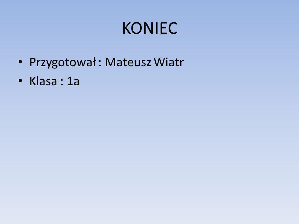 KONIEC Przygotował : Mateusz Wiatr Klasa : 1a