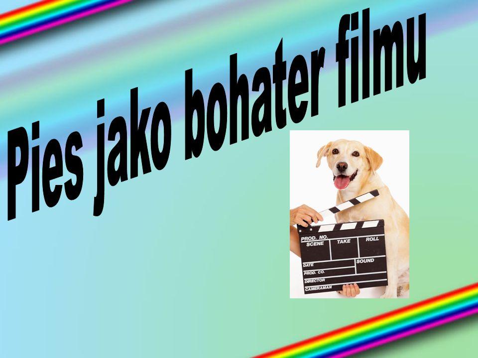 101 DALMAYTŃCZYKÓW Komedia będąca aktorską wersją głośnego filmu animowanego.
