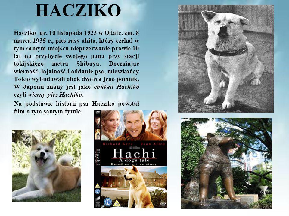 HACZIKO Hacziko ur. 10 listopada 1923 w Ōdate, zm. 8 marca 1935 r., pies rasy akita, który czekał w tym samym miejscu nieprzerwanie prawie 10 lat na p