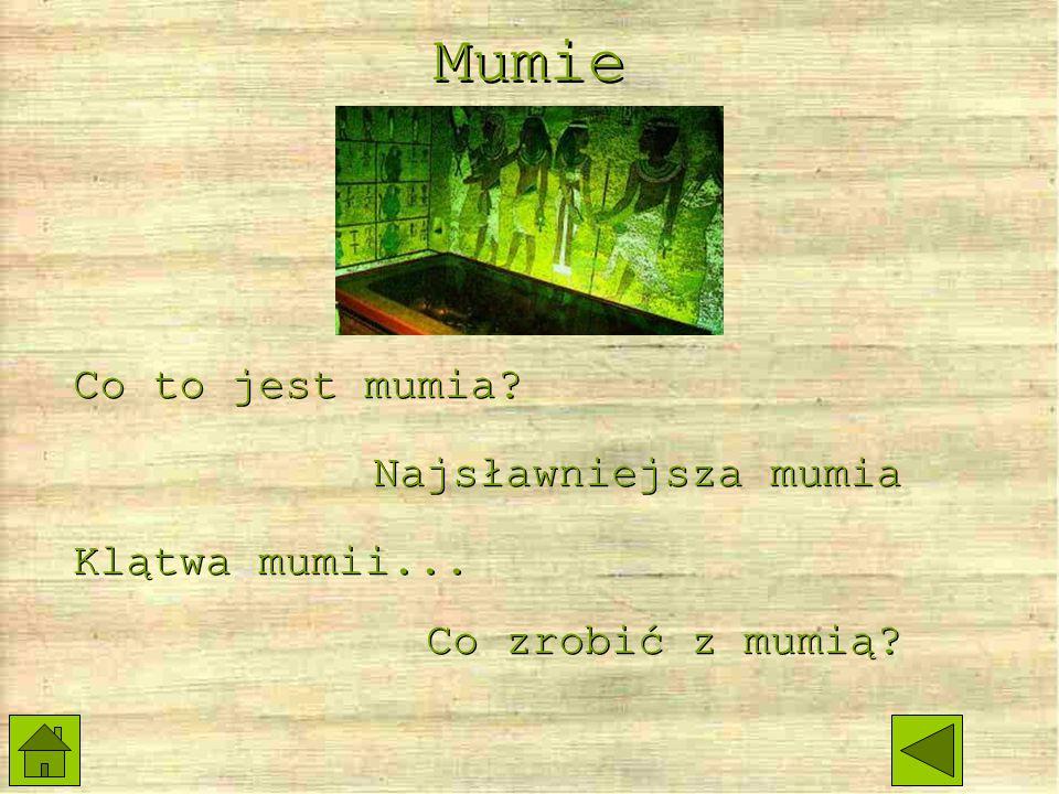 Słowo mumia pochodzi od arabskiego mummiya, co oznaczało smołę ziemną, ponieważ arabowie sądzili, że mumie są nią pokryte.