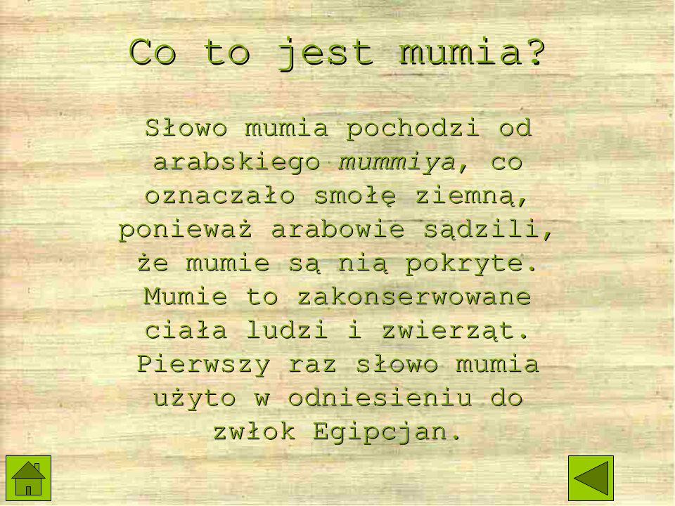 Najsławniejsza mumia Mit o pierwszej mumii Mit o pierwszej mumii