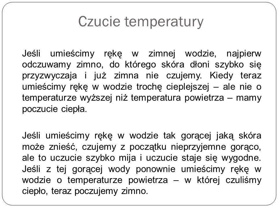 Czucie temperatury Jeśli umieścimy rękę w zimnej wodzie, najpierw odczuwamy zimno, do którego skóra dłoni szybko się przyzwyczaja i już zimna nie czuj