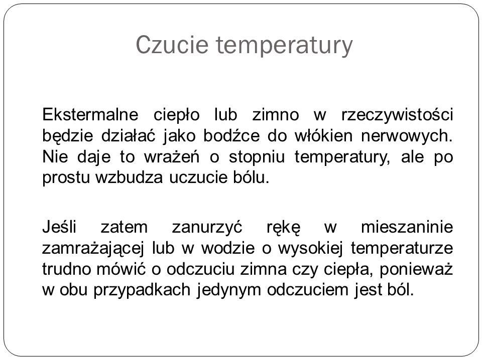 Czucie temperatury Ekstermalne ciepło lub zimno w rzeczywistości będzie działać jako bodźce do włókien nerwowych. Nie daje to wrażeń o stopniu tempera