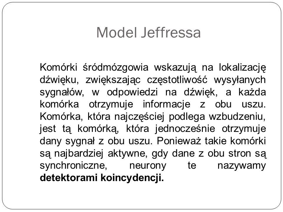 Model Jeffressa Komórki śródmózgowia wskazują na lokalizację dźwięku, zwiększając częstotliwość wysyłanych sygnałów, w odpowiedzi na dźwięk, a każda k