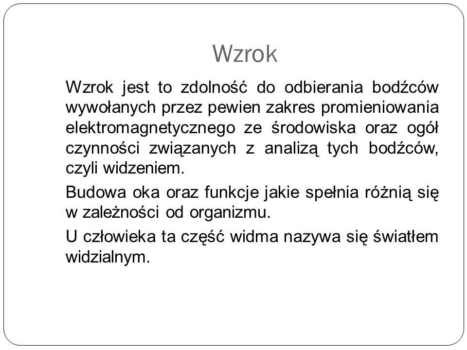 Dodatkowe pola Brodmanna Pole 21 – przetwarzanie złożonych dźwięków, aktywacja podczas obserwacji mowy (razem z polem 45) Pole 8, 9,10 – wyobraźnia słuchowa Pole 43 – selektywna uwaga na mowę (lewa półkula), odpowiedź na bodźce dźwiękowe, identyfikacja znajomych głosów (prawa półkula)