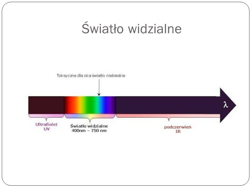Wzrok Niektóre zwierzęta mają zdolność widzenia takiego spektrum fali elektromagnetycznej, które nie jest widoczne dla człowieka.