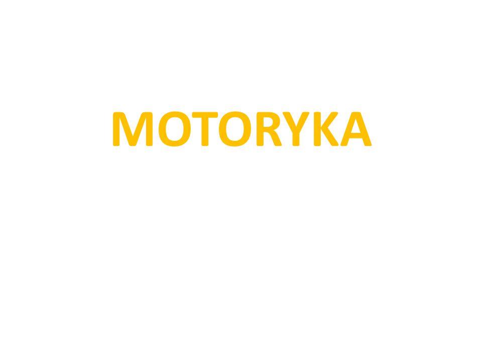 MOTORYKA