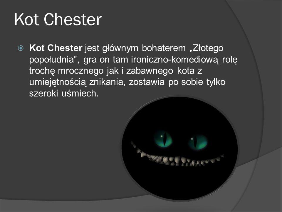"""Kot Chester  Kot Chester jest głównym bohaterem """"Złotego popołudnia"""", gra on tam ironiczno-komediową rolę trochę mrocznego jak i zabawnego kota z umi"""