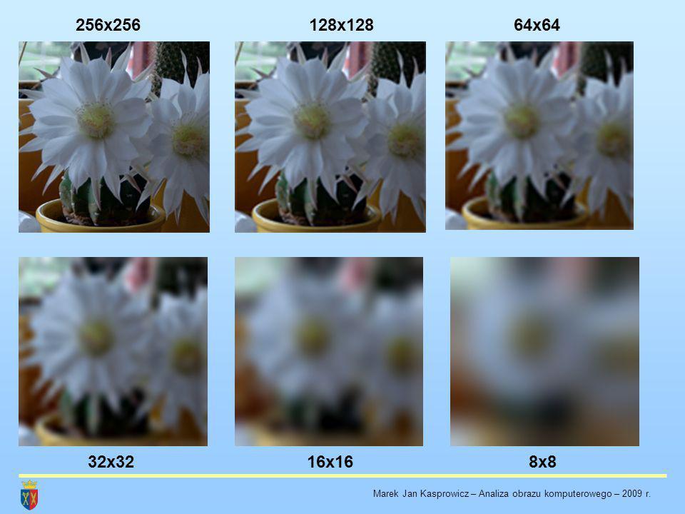 256x256128x12864x64 32x3216x168x8 Marek Jan Kasprowicz – Analiza obrazu komputerowego – 2009 r.