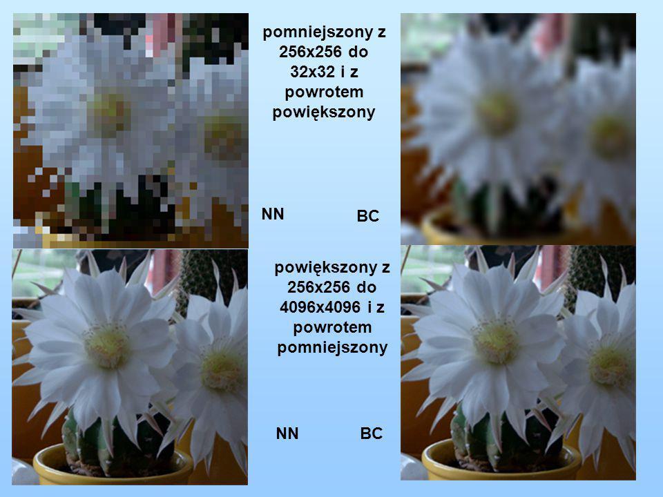 pomniejszony z 256x256 do 32x32 i z powrotem powiększony powiększony z 256x256 do 4096x4096 i z powrotem pomniejszony BC NN BC