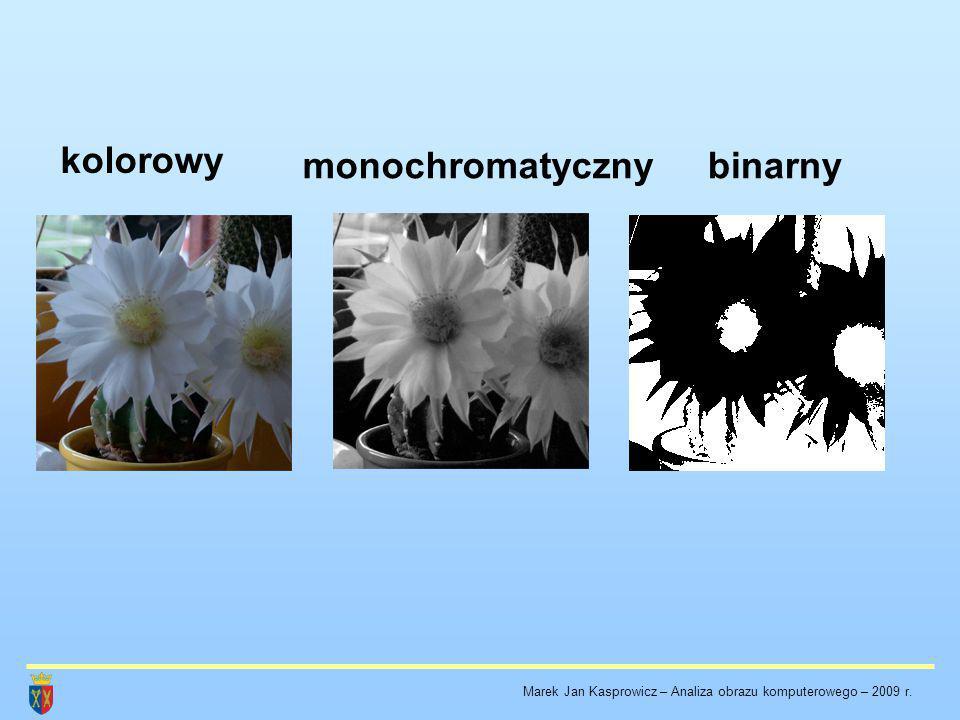 binarnymonochromatyczny kolorowy Marek Jan Kasprowicz – Analiza obrazu komputerowego – 2009 r.