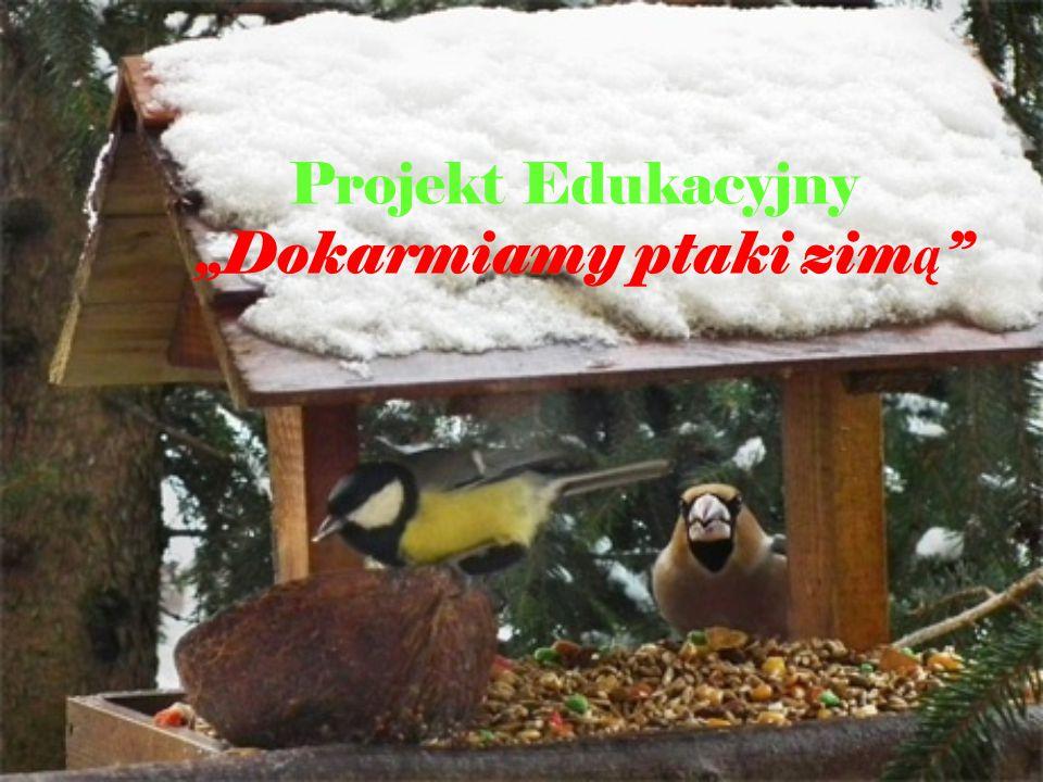 """Projekt Edukacyjny """"Dokarmiamy ptaki zim ą"""
