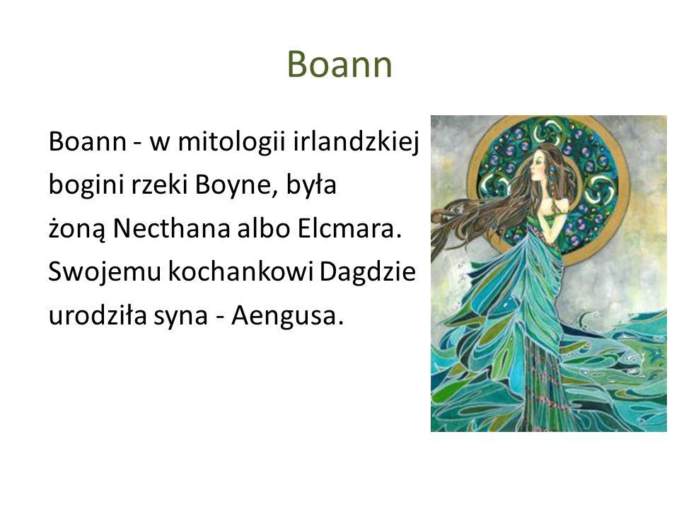 Boann Boann - w mitologii irlandzkiej bogini rzeki Boyne, była żoną Necthana albo Elcmara. Swojemu kochankowi Dagdzie urodziła syna - Aengusa.