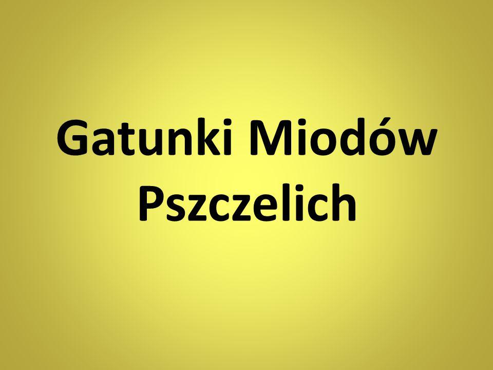 Gatunki Miodów Pszczelich