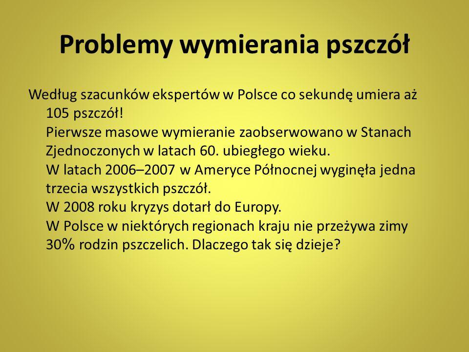 Problemy wymierania pszczół Według szacunków ekspertów w Polsce co sekundę umiera aż 105 pszczół! Pierwsze masowe wymieranie zaobserwowano w Stanach Z
