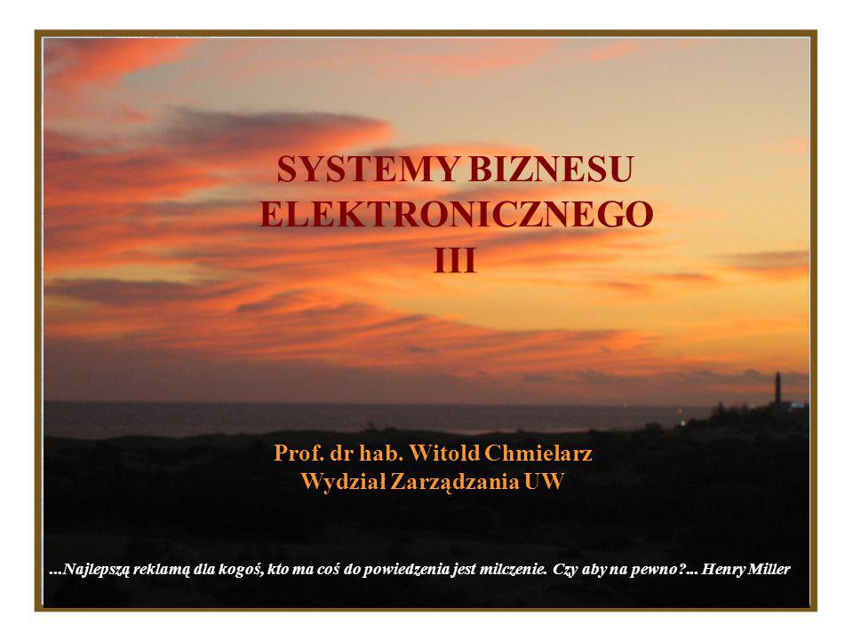 SYSTEMY BIZNESU ELEKTRONICZNEGO III Prof.dr hab.