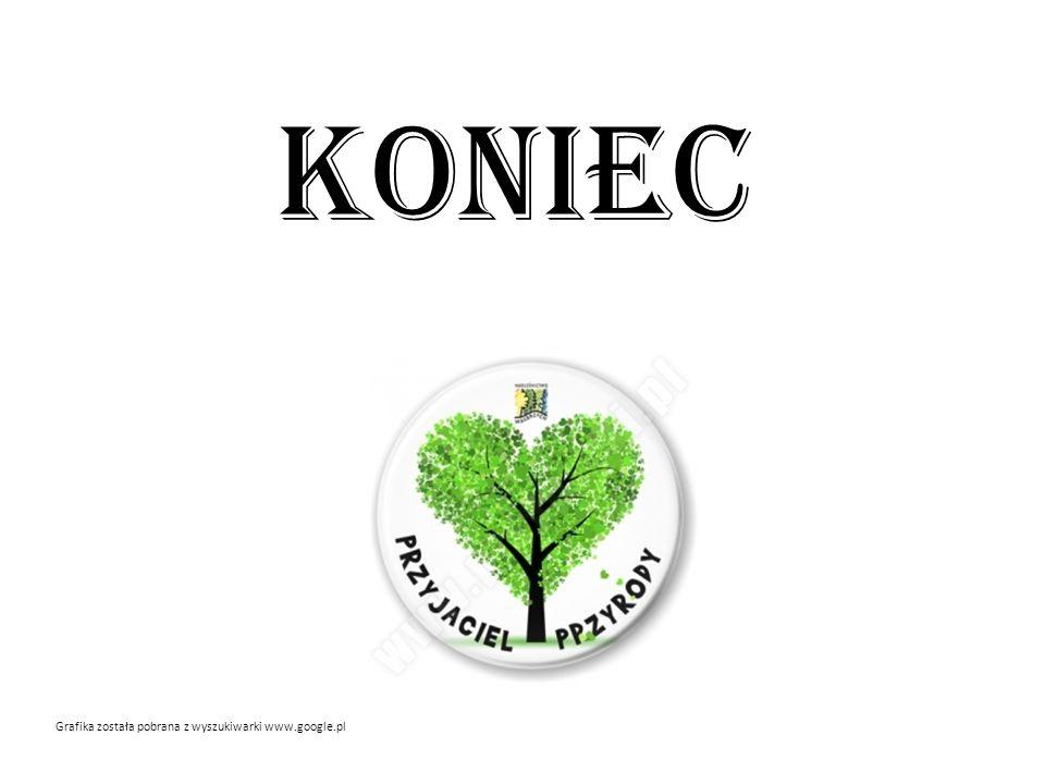 KONIEC Grafika została pobrana z wyszukiwarki www.google.pl