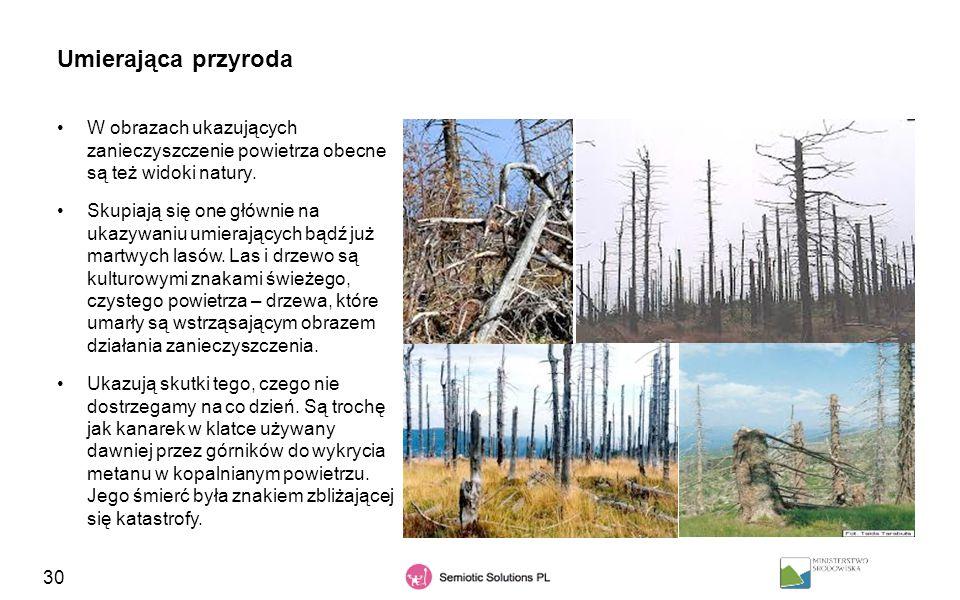 30 Umierająca przyroda W obrazach ukazujących zanieczyszczenie powietrza obecne są też widoki natury. Skupiają się one głównie na ukazywaniu umierając
