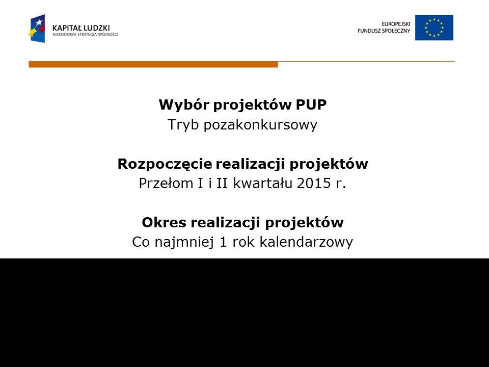 Wybór projektów PUP Tryb pozakonkursowy Rozpoczęcie realizacji projektów Przełom I i II kwartału 2015 r. Okres realizacji projektów Co najmniej 1 rok