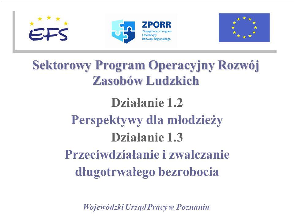 Wojewódzki Urząd Pracy w Poznaniu Sektorowy Program Operacyjny Rozwój Zasobów Ludzkich Działanie 1.2 Perspektywy dla młodzieży Działanie 1.3 Przeciwdziałanie i zwalczanie długotrwałego bezrobocia