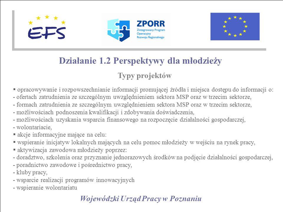 Wojewódzki Urząd Pracy w Poznaniu Działanie 1.2 Perspektywy dla młodzieży Typy projektów  opracowywanie i rozpowszechnianie informacji promującej źródła i miejsca dostępu do informacji o: - ofertach zatrudnienia ze szczególnym uwzględnieniem sektora MSP oraz w trzecim sektorze, - formach zatrudnienia ze szczególnym uwzględnieniem sektora MSP oraz w trzecim sektorze, - możliwościach podnoszenia kwalifikacji i zdobywania doświadczenia, - możliwościach uzyskania wsparcia finansowego na rozpoczęcie działalności gospodarczej, - wolontariacie,  akcje informacyjne mające na celu:  wspieranie inicjatyw lokalnych mających na celu pomoc młodzieży w wejściu na rynek pracy,  aktywizacja zawodowa młodzieży poprzez: - doradztwo, szkolenia oraz przyznanie jednorazowych środków na podjęcie działalności gospodarczej, - poradnictwo zawodowe i pośrednictwo pracy, - kluby pracy, - wsparcie realizacji programów innowacyjnych - wspieranie wolontariatu