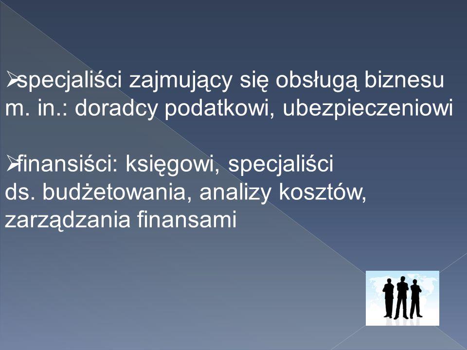  specjaliści zajmujący się obsługą biznesu m. in.: doradcy podatkowi, ubezpieczeniowi  finansiści: księgowi, specjaliści ds. budżetowania, analizy k