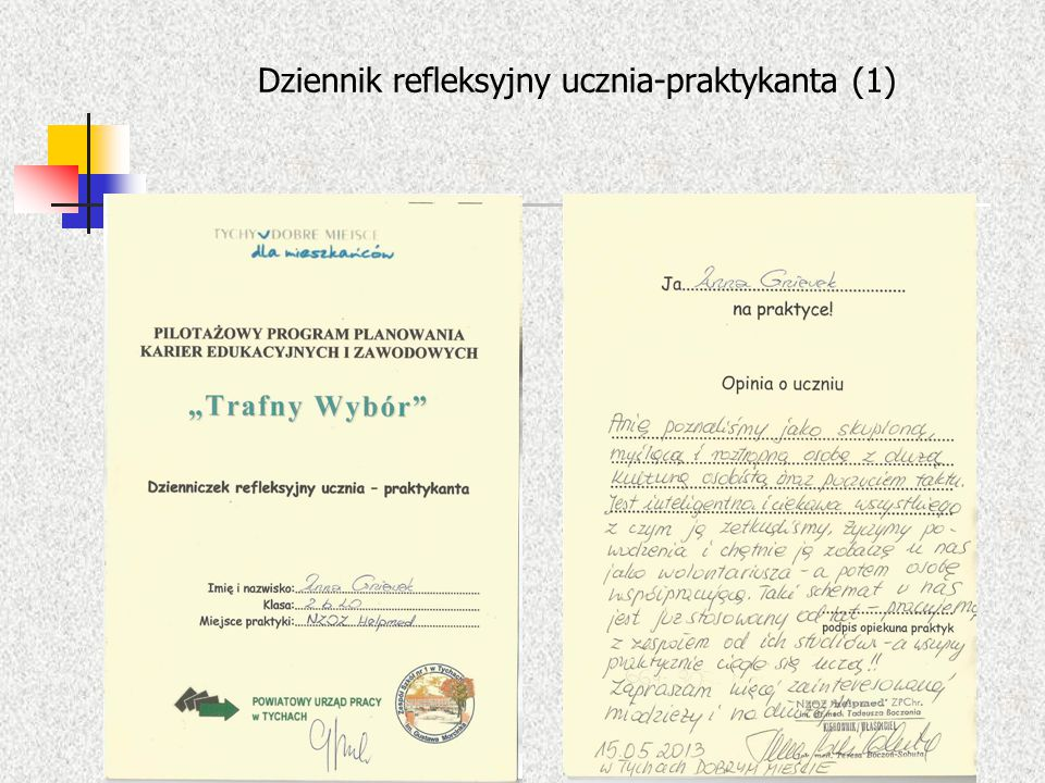 Dziennik refleksyjny ucznia-praktykanta (1)