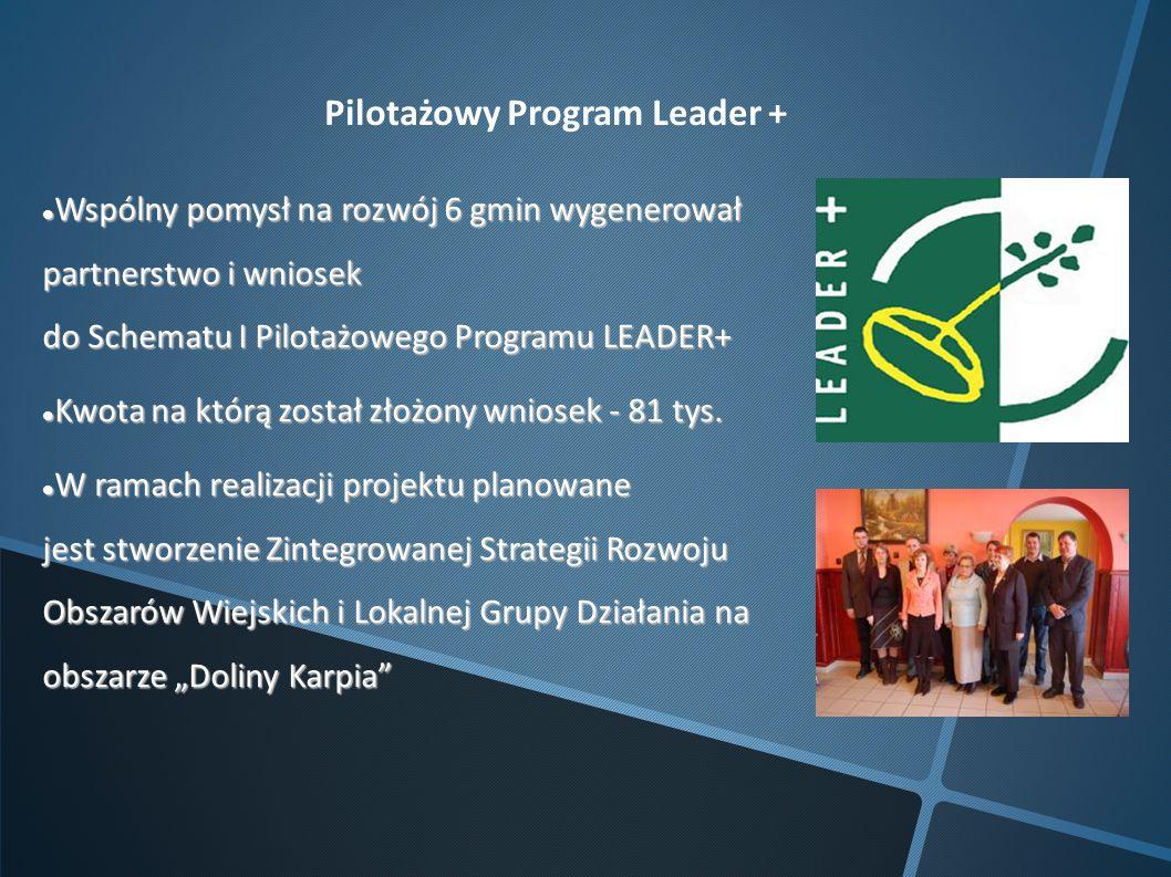 Pilotażowy Program Leader + Wspólny pomysł na rozwój 6 gmin wygenerował partnerstwo i wniosek do Schematu I Pilotażowego Programu LEADER+ Wspólny pomy