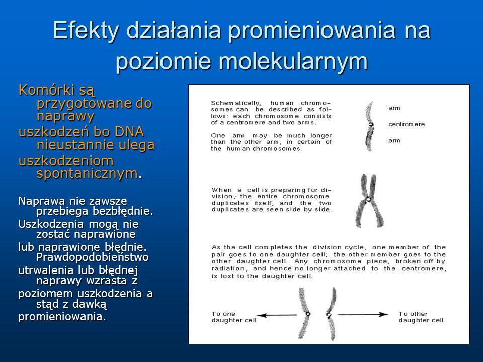 Komórki są przygotowane do naprawy uszkodzeń bo DNA nieustannie ulega uszkodzeniom spontanicznym.