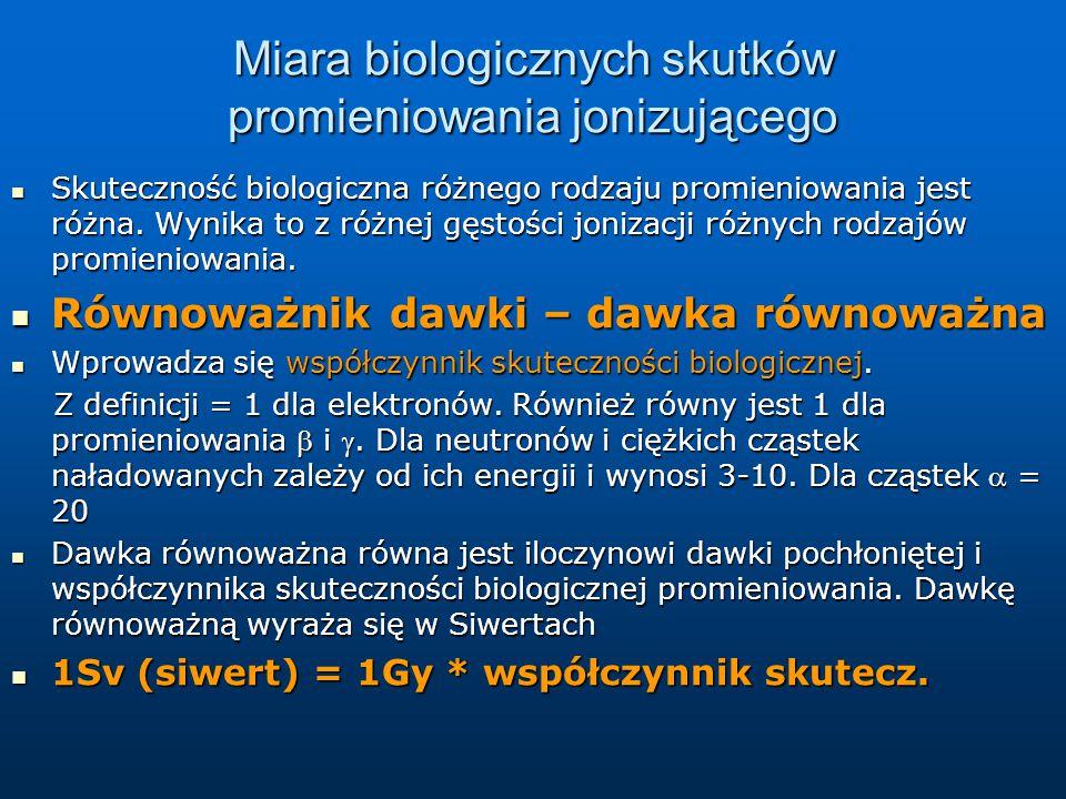 Efekty działania dużych dawek promieniowania na poziomie organizmu Badania na zwierzętach: Dawka 100 Gy – śmierć w ciągu godzin lub minut na skutek uszkodzenia centralnego układu nerwowego.