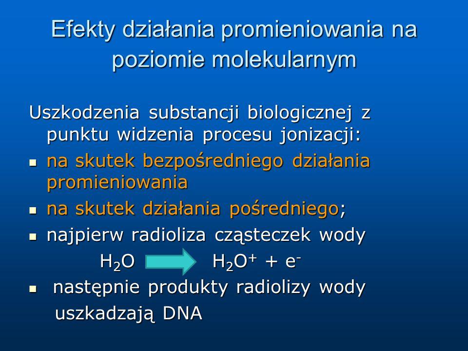 Efekty działania promieniowania na poziomie molekularnym Uszkodzenia substancji biologicznej z punktu widzenia procesu jonizacji: na skutek bezpośredniego działania promieniowania na skutek bezpośredniego działania promieniowania na skutek działania pośredniego; na skutek działania pośredniego; najpierw radioliza cząsteczek wody najpierw radioliza cząsteczek wody H 2 O H 2 O + + e - H 2 O H 2 O + + e - następnie produkty radiolizy wody następnie produkty radiolizy wody uszkadzają DNA uszkadzają DNA
