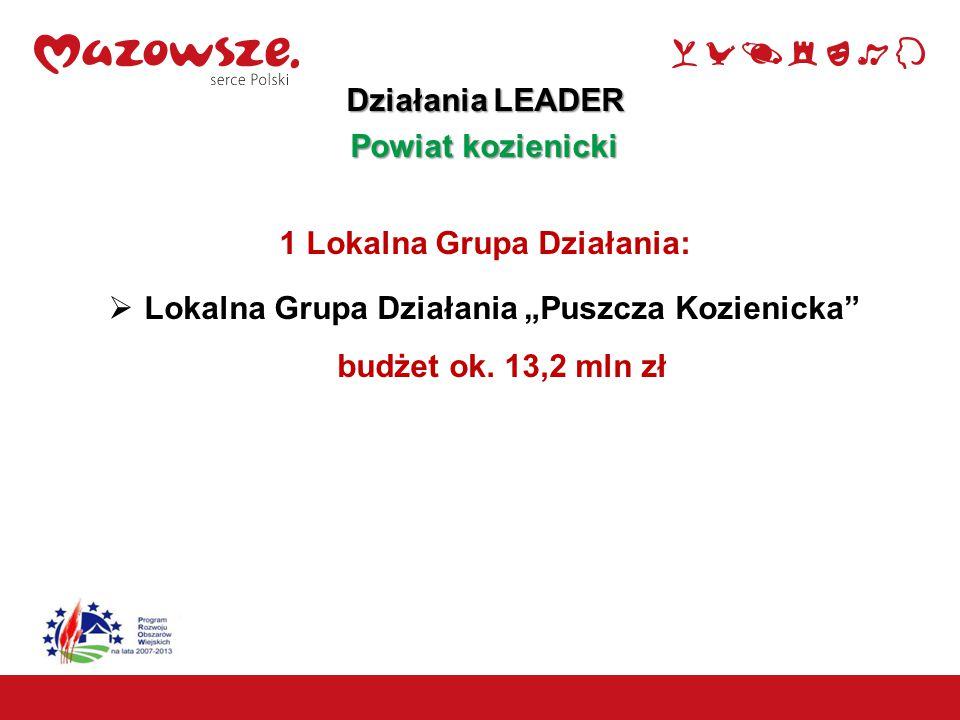 """15 Działania LEADER Powiat kozienicki 1 Lokalna Grupa Działania:  Lokalna Grupa Działania """"Puszcza Kozienicka"""" budżet ok. 13,2 mln zł"""