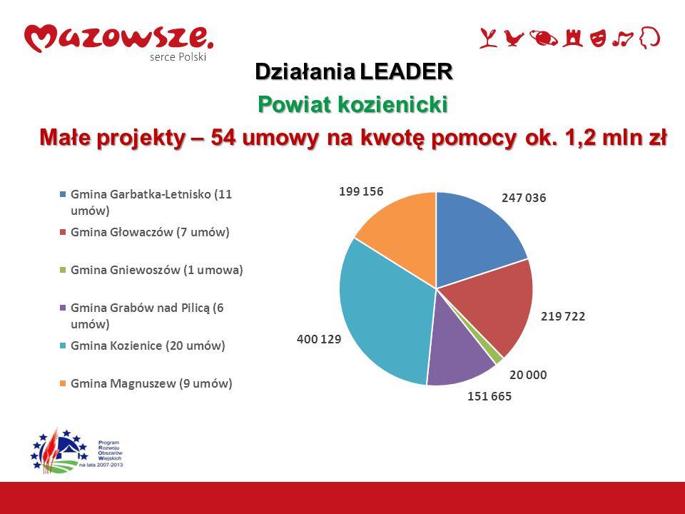 16 Działania LEADER Powiat kozienicki Małe projekty – 54 umowy na kwotę pomocy ok. 1,2 mln zł