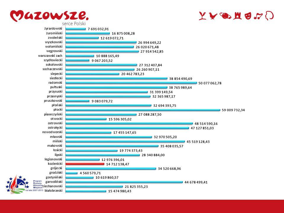 17 Działania LEADER Powiat kozienicki – Małe projekty zakres