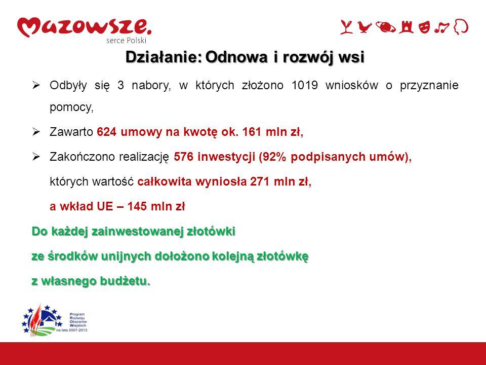 18 Działania LEADER Powiat kozienicki- Odnowa wsi 9 umów na kwotę pomocy ok. 1,8 mln zł