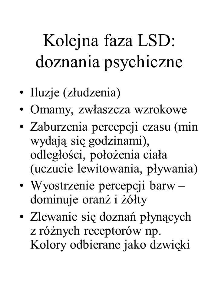 Kolejna faza LSD: doznania psychiczne Iluzje (złudzenia) Omamy, zwłaszcza wzrokowe Zaburzenia percepcji czasu (min wydają się godzinami), odległości, położenia ciała (uczucie lewitowania, pływania) Wyostrzenie percepcji barw – dominuje oranż i żółty Zlewanie się doznań płynących z różnych receptorów np.