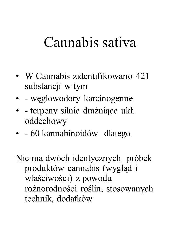 Cannabis sativa W Cannabis zidentifikowano 421 substancji w tym - węglowodory karcinogenne - terpeny silnie drażniące ukł. oddechowy - 60 kannabinoidó