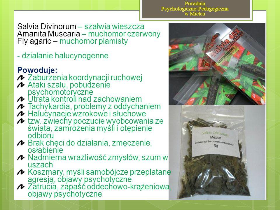 Salvia Divinorum – szałwia wieszcza Amanita Muscaria – muchomor czerwony Fly agaric – muchomor plamisty - działanie halucynogenne Powoduje: Zaburzenia