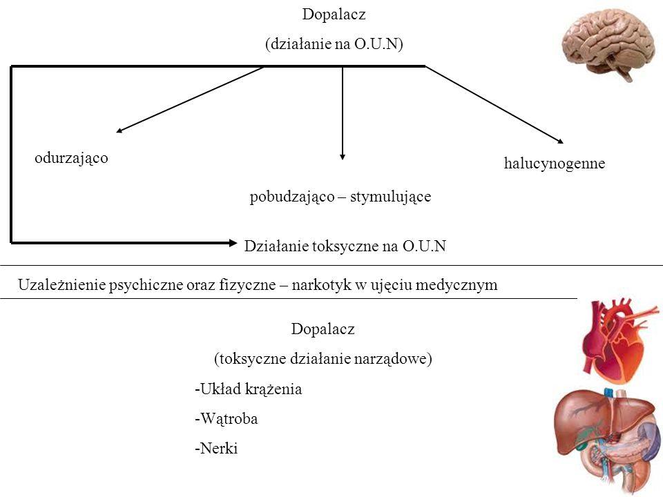 Dopalacz (działanie na O.U.N) odurzająco pobudzająco – stymulujące halucynogenne Uzależnienie psychiczne oraz fizyczne – narkotyk w ujęciu medycznym Dopalacz (toksyczne działanie narządowe) -Układ krążenia -Wątroba -Nerki Działanie toksyczne na O.U.N